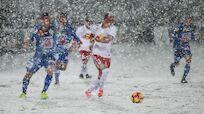 Termin Neuaustragung FC Liefering - SC Wiener Neustadt